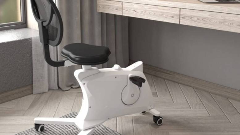 Flexispot Sit2Go 2-in-1 Fitness Chair