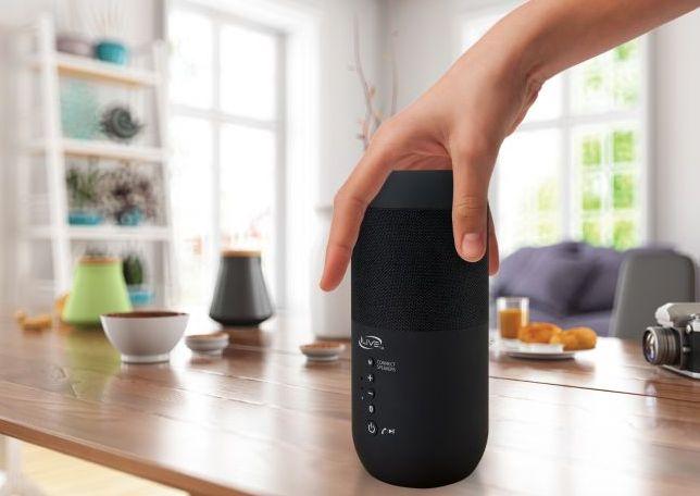iLive Indoor/Outdoor Dual Bluetooth Speakers