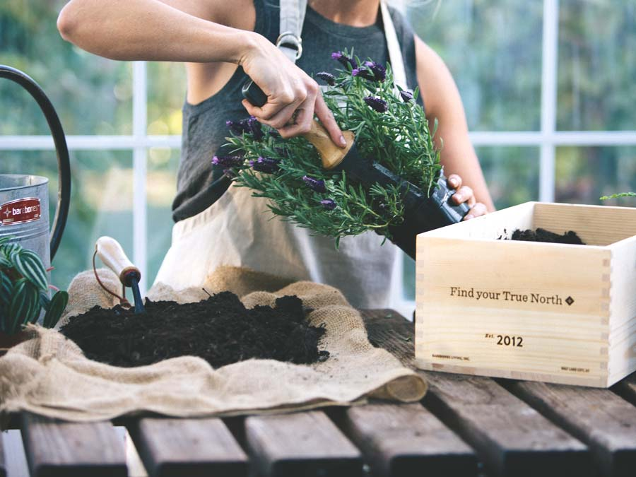 Gardening Tool: All-In-One Knife, Shovel, and Measuring Gardening Tool