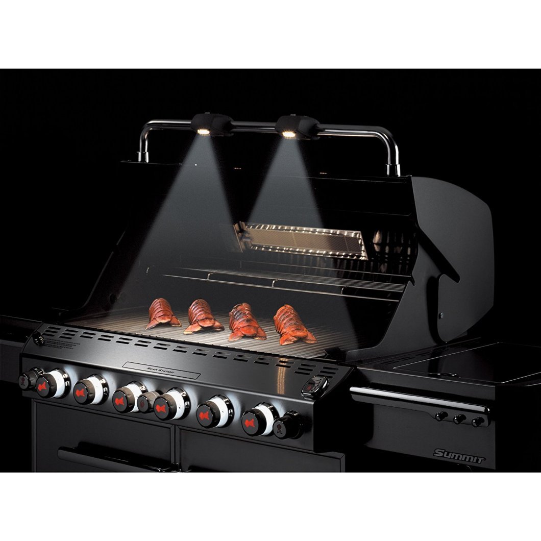 Weber Summit Gas Grill: Heavy-Duty, Luxury Grilling for Summer
