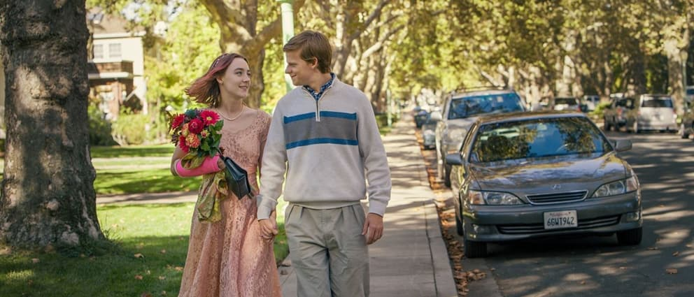 """Lady Bird"" Breaks Review Records: A True Heartwarming and Hilarious Story"