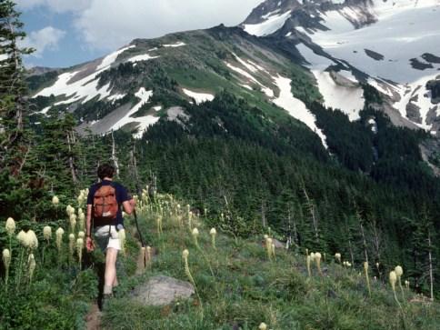 Hiking Timberline Trail Mt Hood Oregon