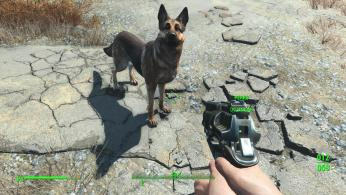 fallout-4-ps4-screenshots-leaked (28)