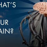 What's in Your Brain? And 10 Items That You Might Consider Putting In There