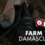 REVIEW: Farm to Feet Hiking Socks