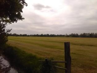Near Drachten (NL)
