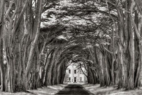 cypress_tunnel_ac