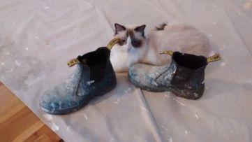 Elska snuggles my work boots