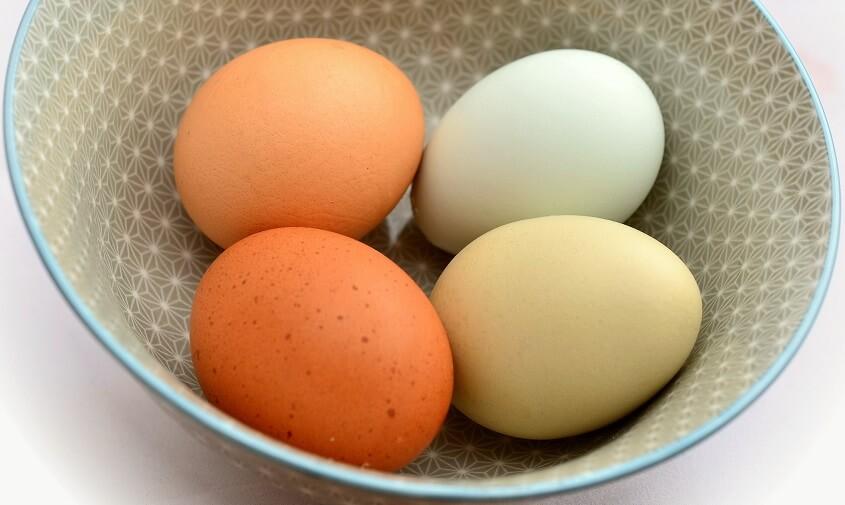 Æggemasse til tærte, madtærter med æg
