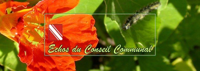 Conseil communal du 22 juin 2017