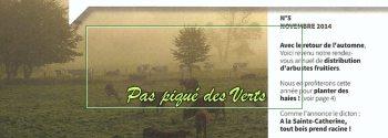Pas piqué des Verts 05     Automne 2014