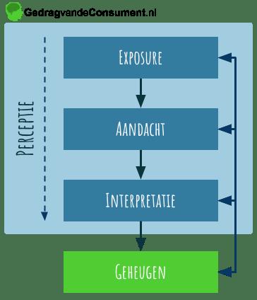 conceptueel model van perceptie