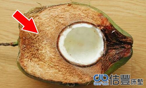 椰子棕位於椰子中果皮的部分