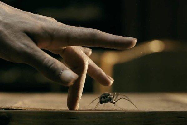 Lemony Snicket, una serie di… Netflix: il trailer