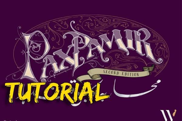 Pax Pamir II Ed. – Tutorial e Parere
