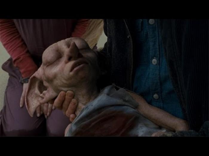 Here lies Dobby, a free elf