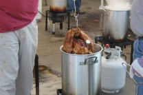 turkey 105