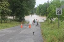 flood 039