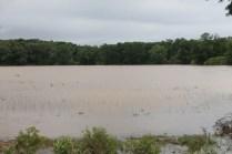 flood 068