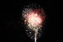 Freedom Festival Fireworks 16 (17)
