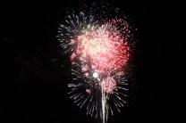 Freedom Festival Fireworks 16 (18)