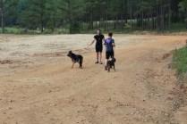 US Canine Biathlon (5)