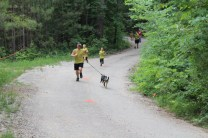 US Canine Biathlon (7)