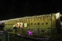 Christmas At The Falls '17 (101)
