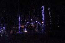 Christmas At The Falls '17 (16)