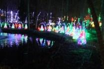 Christmas At The Falls '17 (50)