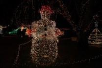 Gilley's Christmas Lights '17 (18)