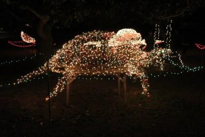 Gilley's Christmas Lights '17 (20)