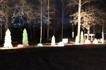 Pell City Lakeside Park Christmas '17 (13)