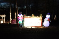 Pell City Lakeside Park Christmas '17 (15)