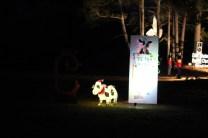 Pell City Lakeside Park Christmas '17 (40)