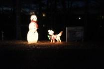 Pell City Lakeside Park Christmas '17 (6)
