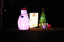 Pell City Lakeside Park Christmas '17 (8)
