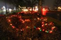 Quintard Median Christmas Lights 2018 (46)