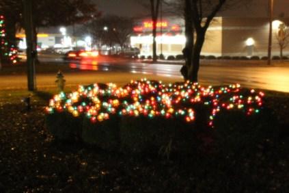 Quintard Median Christmas Lights 2018 (53)