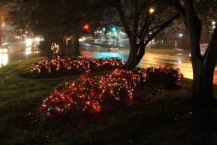 Quintard Median Christmas Lights 2018 (66)