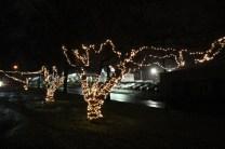 Quintard Median Christmas Lights 2018 (74)