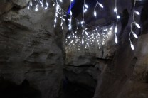 Rickwood Caverns Christmas 2018 (40)
