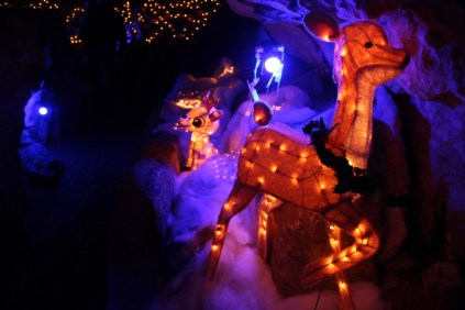 Rickwood Caverns Christmas 2018 (75)
