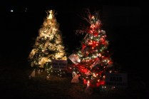 christmas in the park arab 2018 (15)