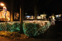 christmas in the park arab 2018 (37)