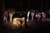 christmas in the park arab 2018 (38)