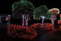 christmas in the park arab 2018 (6)