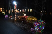 christmas in the park arab 2018 (83)