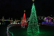 Christmas At The Falls 2019 (8)