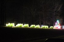 Pell City Christmas In The Park 2019 (18)